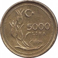 reverse of 5000 Lira (1995 - 2001) coin with KM# 1029 from Turkey. Inscription: 5000 LİRA 1996