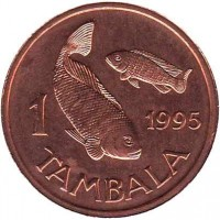 reverse of 1 Tambala (1995) coin with KM# 33 from Malawi. Inscription: 1 1995 TAMBALA