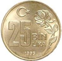reverse of 25 Bin Lira - Environmental Protection (1995) coin with KM# 1043 from Turkey. Inscription: 25 BİN LİRA 1995
