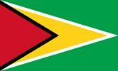 Guyana Co-operative Republic flag